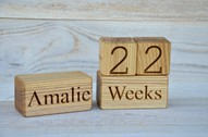 Personalized Wood Baby Age Blocks for Baby Shower New Baby Birthday Gift Idea Photo Props Nursery Decor and Maternity Blocks